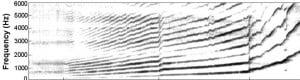 Harmonic graph