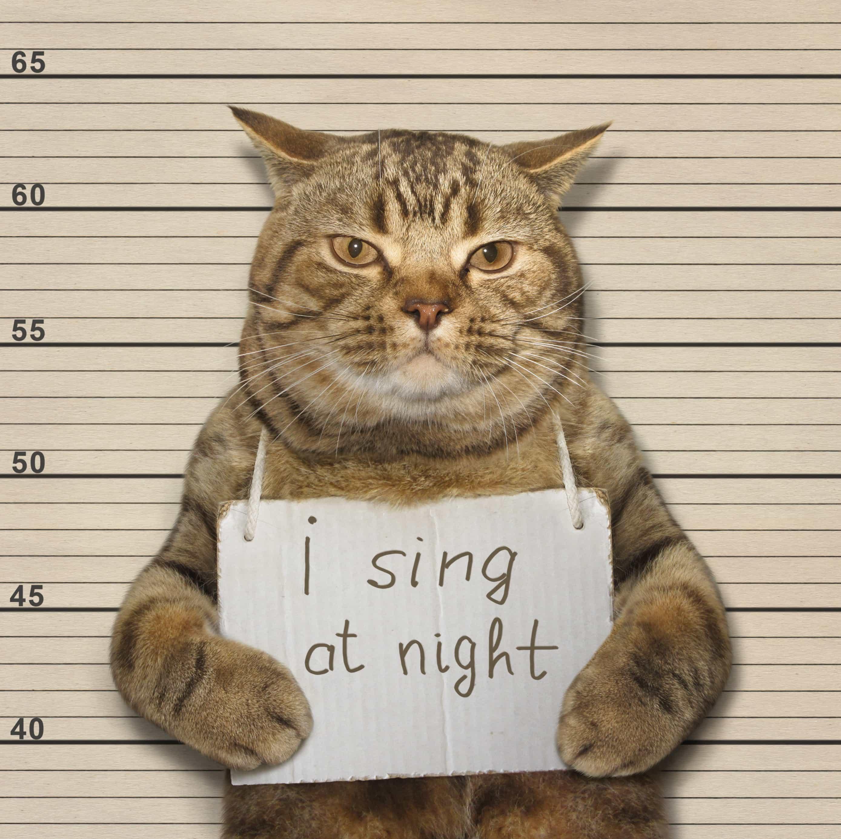 Stretch that vocal ligament for a bigger range!